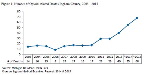Bar Graph showing the increase in drug overdoses between 2003-2015