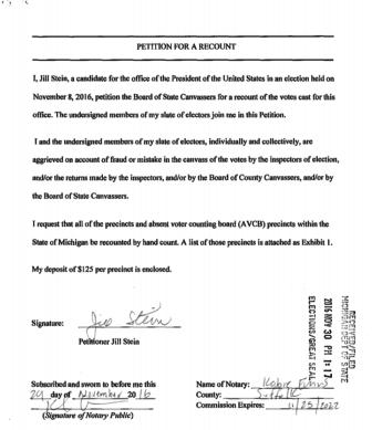 Judge Goldsmiths court document in response to Stein lawsuit