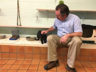 Ingham County Animal Control Director John Dinon sitting down petting a black cat.
