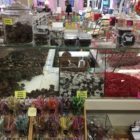 Kean's original candy counter still sits in the store to this day.