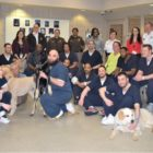 Arlington service dogs