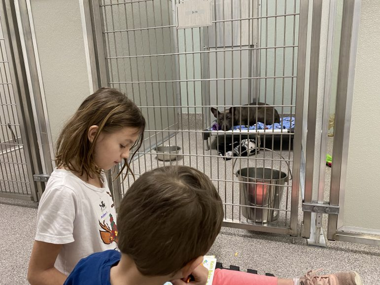 Two children read a book to a dog in a kennel.