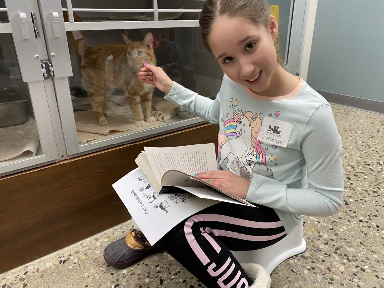 Young girl reads a book to a cat in its cage.