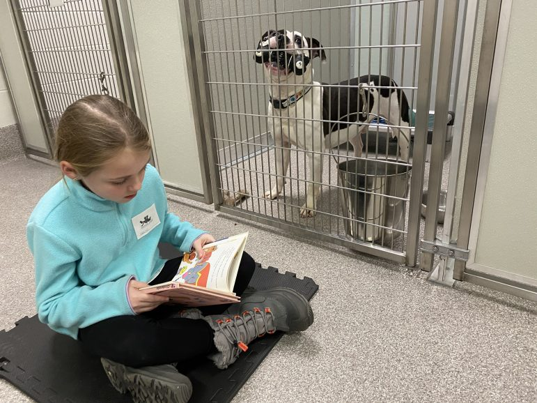 A little girl reads a book to a dog in a kennel.