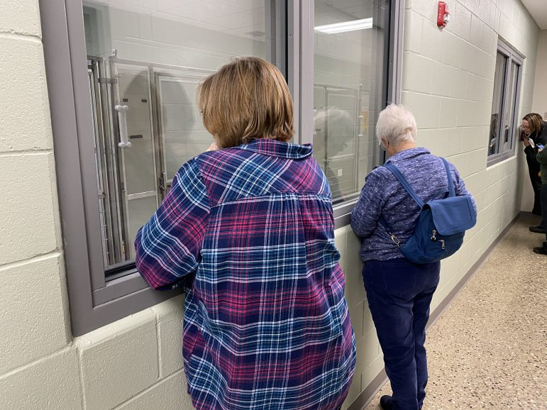 Parents and guardians behind glass watch their kids read to dogs.