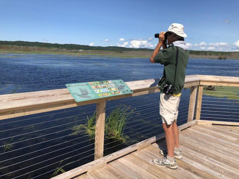 Birder Brian Allen looks out at Arcadia Marsh.