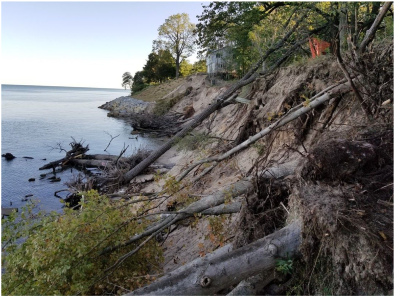 Erosion from high water levels on the southeastern shore of Lake Michigan has exposed tree roots.
