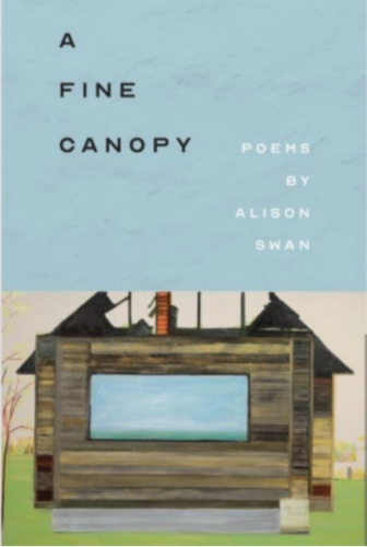 The cover of 'A Fine Canopy