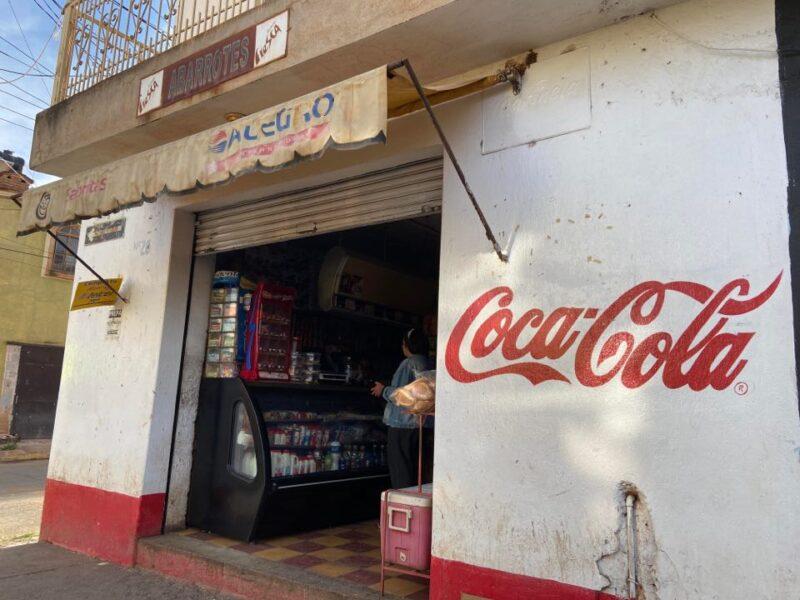 This is Benjamin's abarrotes store in San Ignacio Cerro Gordo, Jalisco, Mexico.