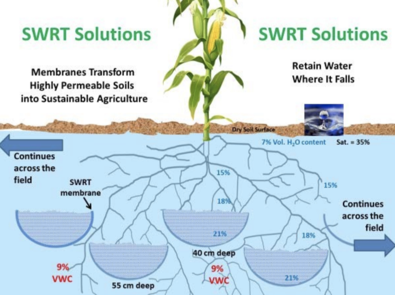"This diagram shows where Alvin Smucker's polymer ""SWRT"" troughs are placed to retain water at plant roots."