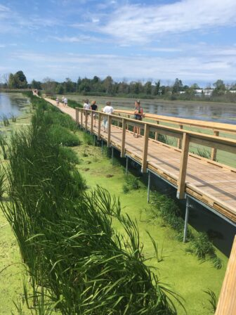 The nearly mile-long boardwalk at Arcadia Marsh built by the Grand Traverse Regional Land Conservancy.