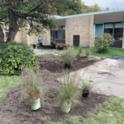 This image show plants beginning to be planted at Haslett Middle School